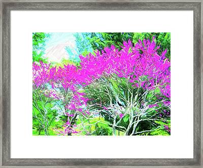 Framed Print featuring the photograph Perennial Garden by Susan Carella