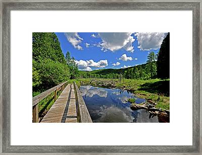 Perfect Day Framed Print by Russell Todd
