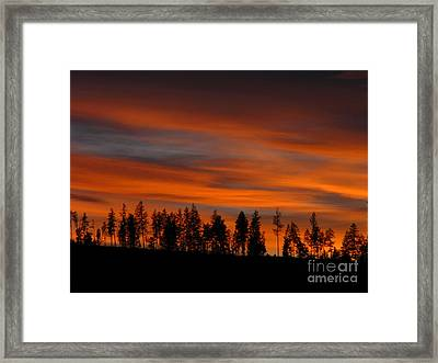 Perfect Evening Framed Print
