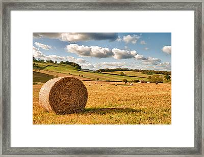 Perfect Harvest Landscape Framed Print by Amanda Elwell