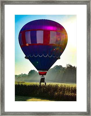 Framed Print featuring the photograph Perfect Landing by Kendall McKernon