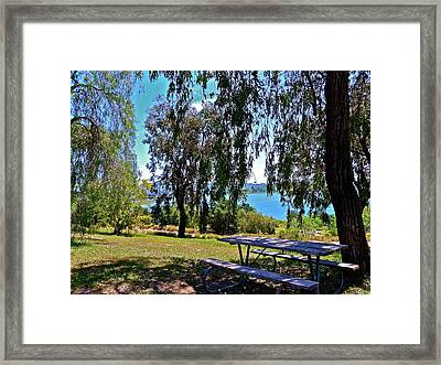 Perfect Picnic Place Framed Print