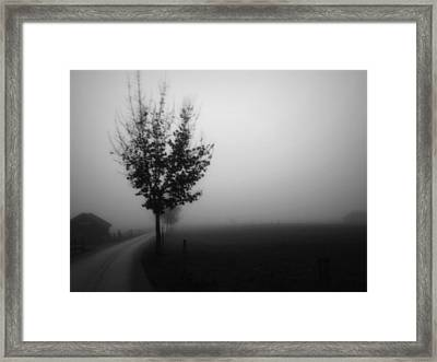 Perfect Sense IIi Framed Print