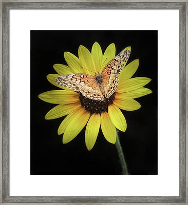 Perfect Timing Framed Print
