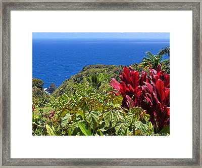 Perfect View Framed Print by Nicole I Hamilton