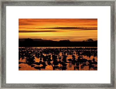 Perfect Way To End The Day Framed Print