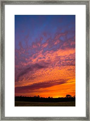 Perfection Framed Print by Shelby Young