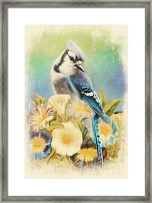 Perfectly Poised Framed Print by Tina LeCour