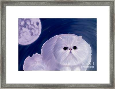 Persian Cat  Framed Print