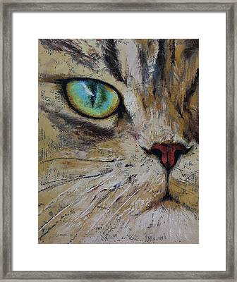 Persian Cat Framed Print by Michael Creese