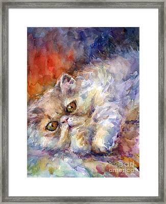Persian Cat Painting Framed Print by Svetlana Novikova