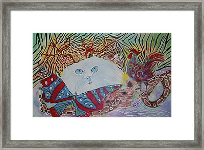 Persian Cat Framed Print
