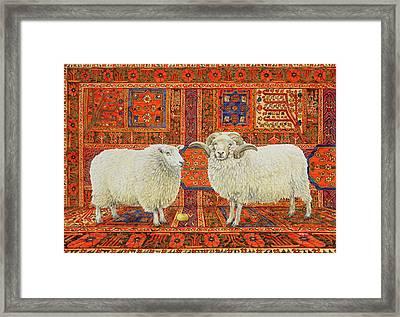 Persian Wool Framed Print by Ditz