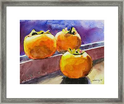 Persimmon Framed Print by Melody Cleary