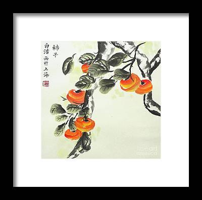 Persimon Framed Prints