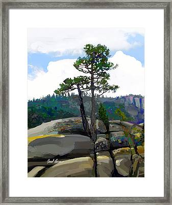 Persistence Tree Framed Print