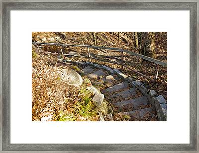 Perspective Framed Print by Robert Joseph