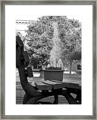 Perspectives Framed Print by Dawn Davis