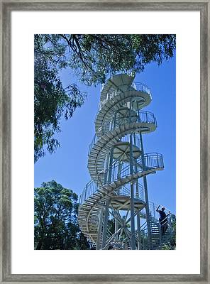 Perth Kings Park Double Helix Dna Tower  Framed Print