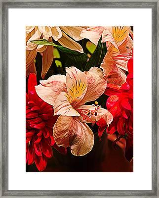 Peruvian Lily Grain Framed Print by Bill Tiepelman