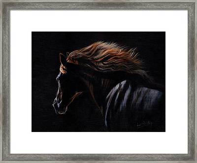 Framed Print featuring the painting Peruvian Paso Horse by David Stribbling