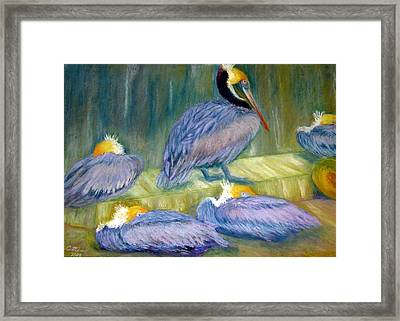 Framed Print featuring the pastel Peruvian Pelicans Two Pastel by Antonia Citrino