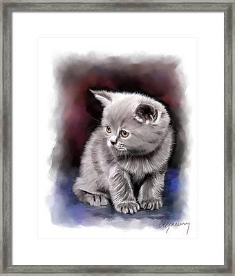 Pet Cat Portrait Framed Print by Michael Greenaway
