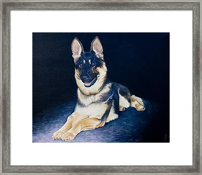 Pet Commission-shaka Framed Print by Pauline Sharp