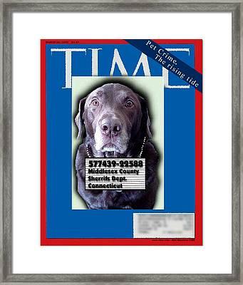 Pet Crime Framed Print by Ross Powell