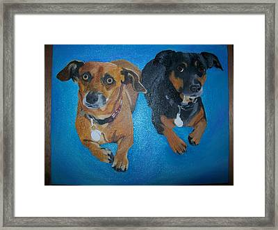 Pet Portrait Original Oil Painting On Canvas By Pigatopia Framed Print by Shannon Ivins