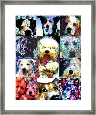 Pet Portraits Framed Print by Alene Sirott-Cope