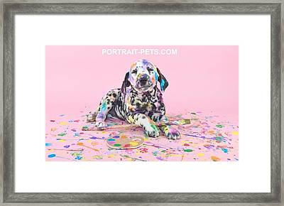 Pet Portraits With A Touch Of Humour Framed Print by Pet Portrait