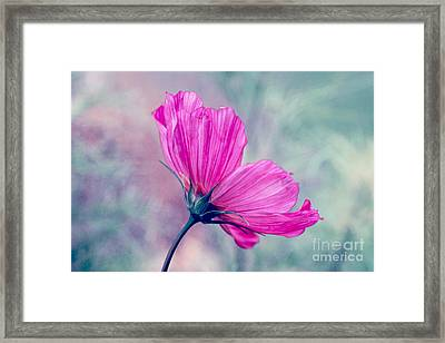 Petalia - 05b Framed Print by Variance Collections