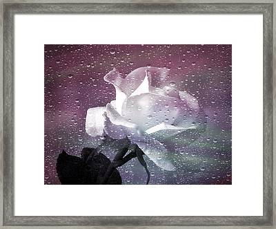 Petals And Drops Framed Print by Julie Palencia