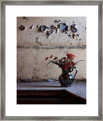 Petals And Peeling Paint - Preston Castle Framed Print