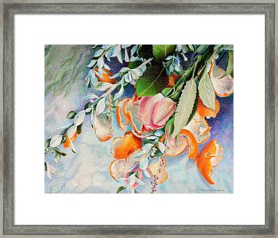 Petals And Peels Framed Print by Robynne Hardison