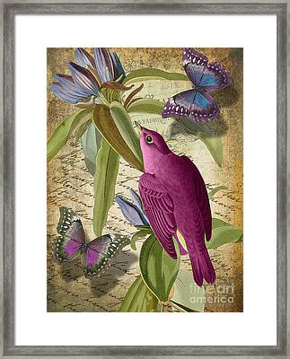 Petals And Wings I Framed Print by Mindy Sommers