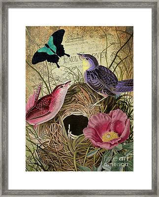 Petals And Wings IIi Framed Print by Mindy Sommers