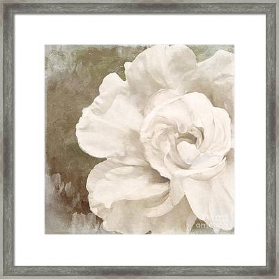 Petals Impasto II Framed Print by Mindy Sommers