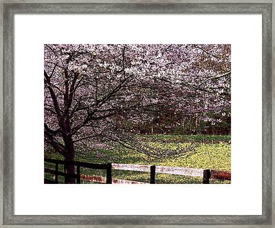 Petals In The Wind Framed Print by Joyce Kimble Smith