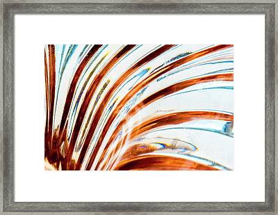 Framed Print featuring the photograph Petals Of Glass by Wendy Wilton