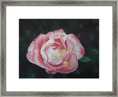 Petals Of Love Framed Print