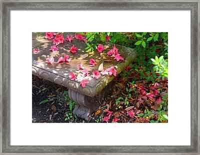 Petals On A Bench Framed Print