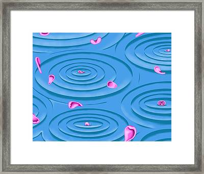 Petals On Water I Framed Print