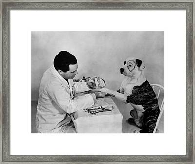 Pete The Pup Framed Print by Fox Photos