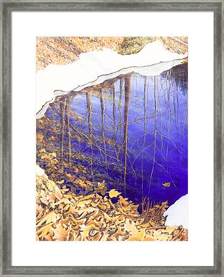 Peter's Spot Framed Print