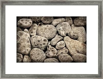 Petoskey Stones Vl Framed Print