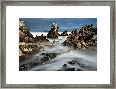 Petrel Cove Framed Print