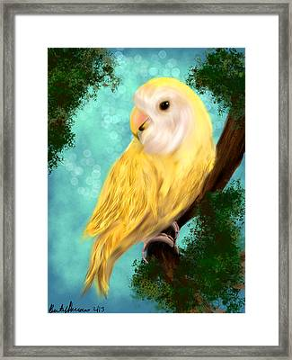 Petrie The Lovebird Framed Print