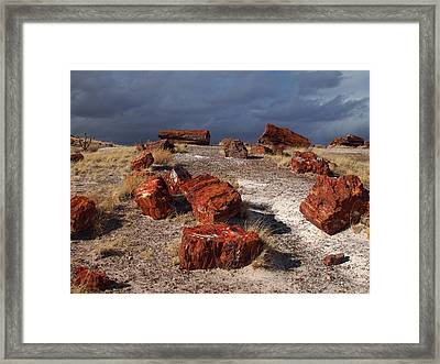 Framed Print featuring the photograph Petrified Forest National Park by James Peterson